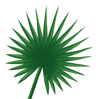 Fan palm 25x25 cm napkins